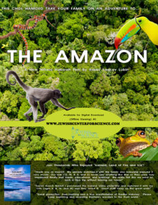 Take a Virtual Journey Through the Amazon